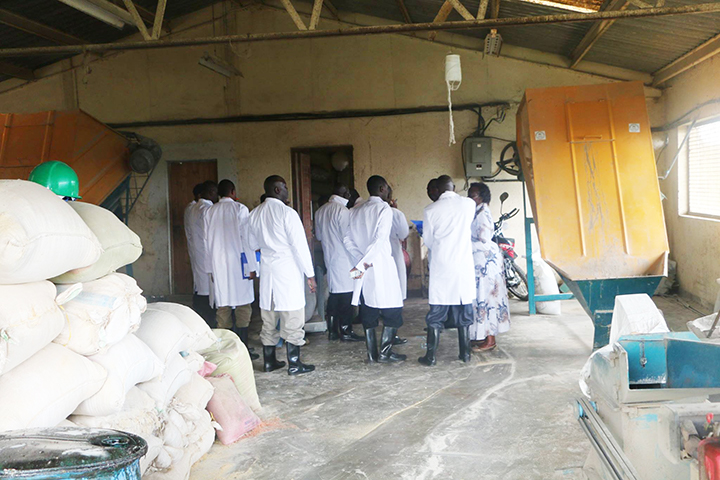 Livestock Feeds Production at Egerton University